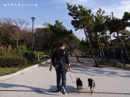 県立城ケ島公園①