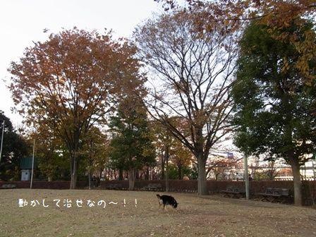 西口公園②