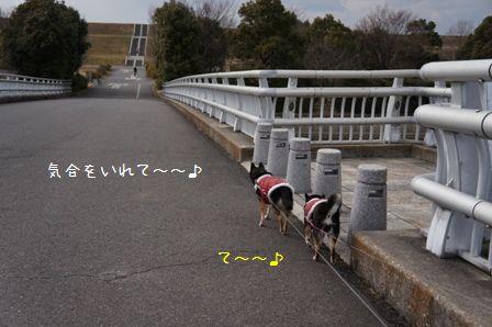 道満1周散歩②