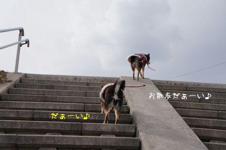 道満1周散歩③