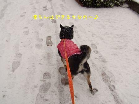 雪散歩凜①