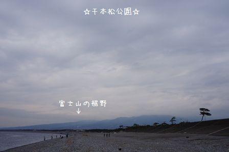 千本松公園①
