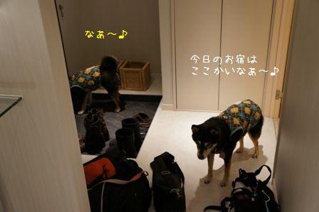 Hotel Dear Dog伊豆長岡①