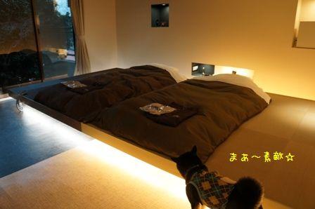 Hotel Dear Dog伊豆長岡②