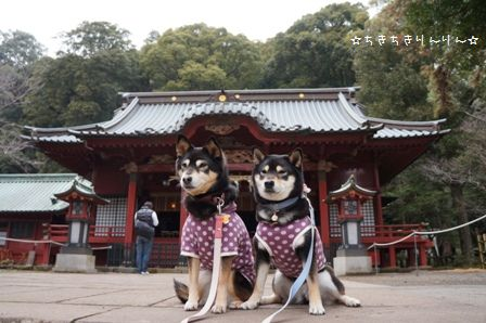 伊豆山神社②