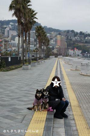 海浜公園②