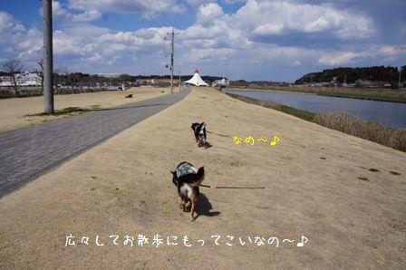 道の駅「多古」①