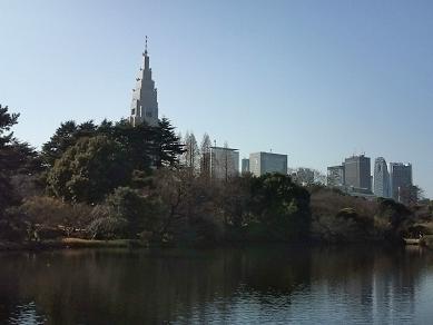 公園の外は高層ビル