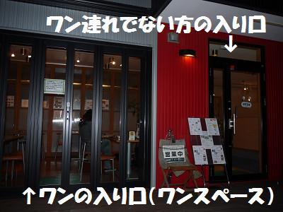 resize3347.jpg
