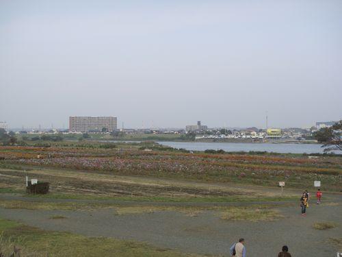 2011-10-12-01.jpg