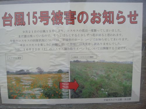 2011-10-12-08.jpg