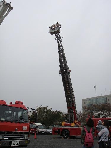 2011-11-15-03.jpg