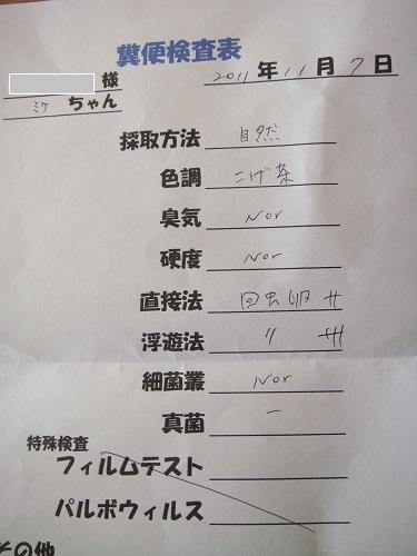 2011-11-7-01.jpg