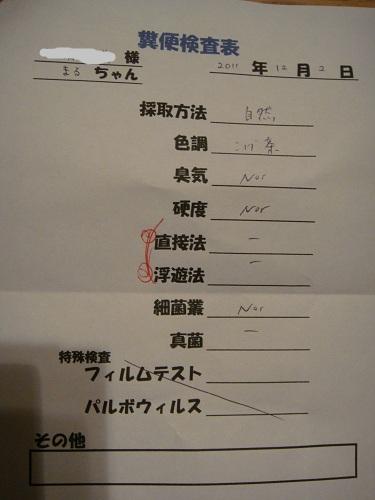 2011-12-2-01.jpg
