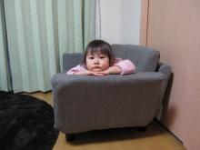 コピー ~ gazou 973