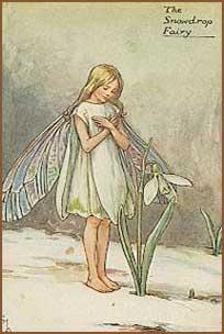 fairy_flower_snowdrop_orig.jpg