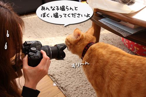 ぼく撮ってよ
