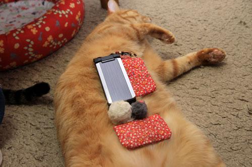 携帯も充電