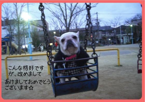 2011おせち3