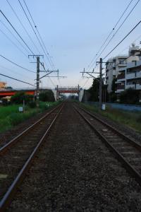 DSC_1217.jpg