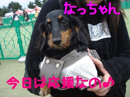 DSC02330.jpg