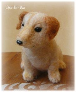 ラブラドール子犬2