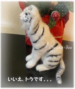 トラです。。。