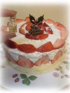 2010年クリスマスおうちケーキ
