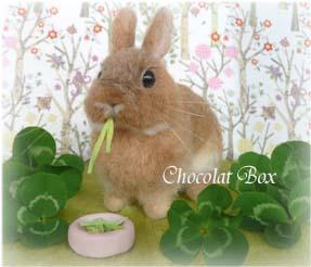 Chocolat Box牧草もぐライムちゃん左ナナメ
