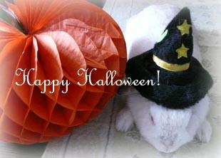 マルシェhappy halloween!
