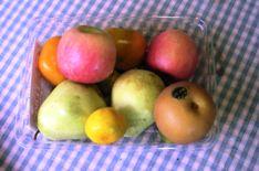 food1_20101011105711.jpg