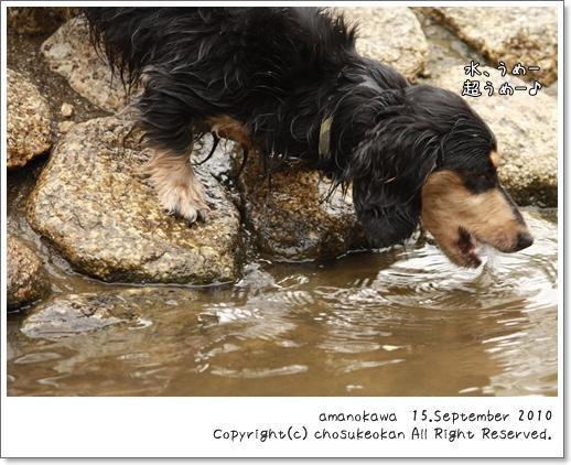 川遊び 1