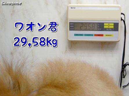 3-090823.jpg