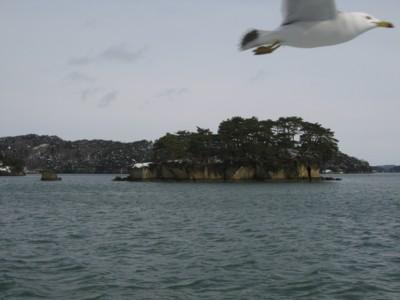 松島湾観光1