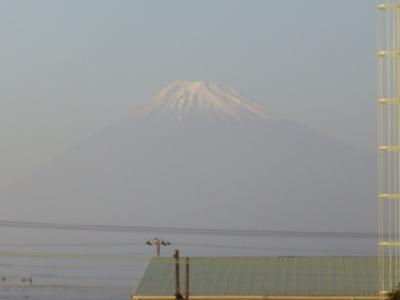田子の浦富士山1