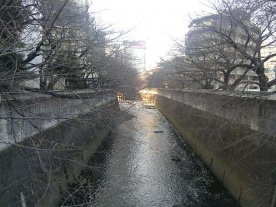 314神田川魚路
