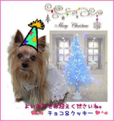 2010年クリスマスカード