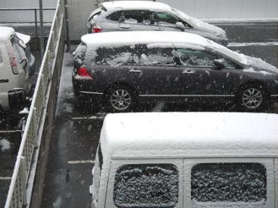 3年ぶりの積雪