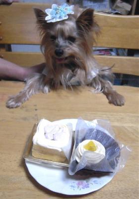 ケーキ2つでお祝い