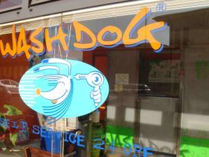 dog wash3
