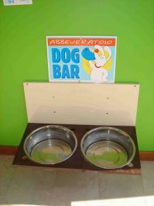 dog wash6