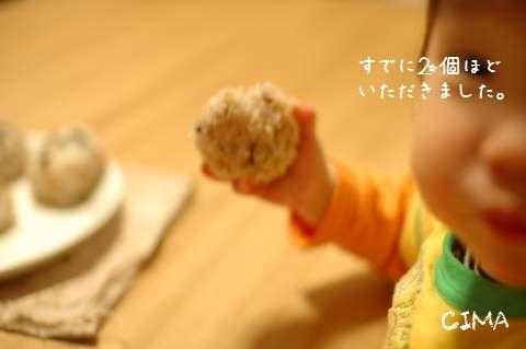 20100128_2.jpg