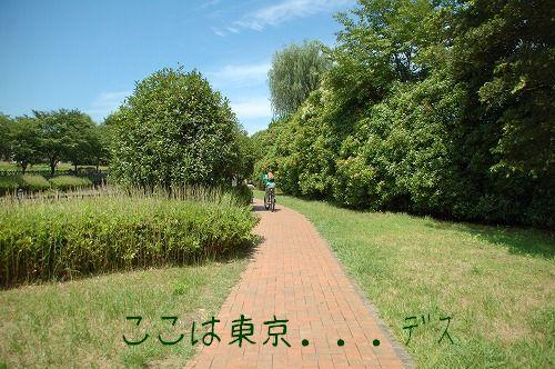20100710_1.jpg