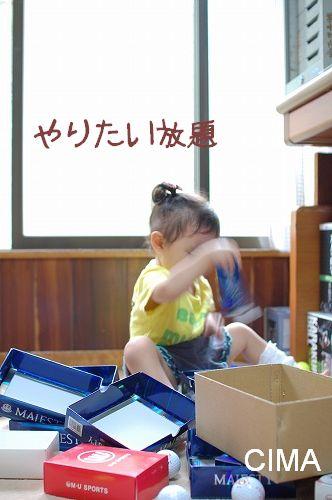 20100801_1.jpg