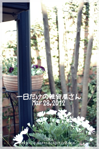 20120329_1.jpg