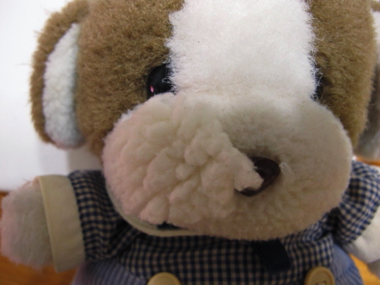 鼻横の穴 補修1