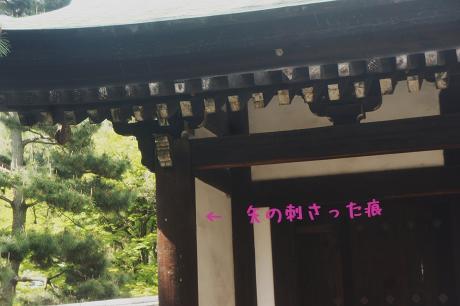 YC9uW[1]