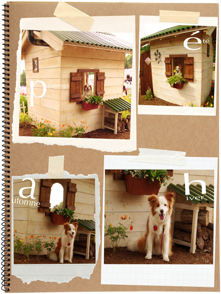 20110309web3jpg.jpg