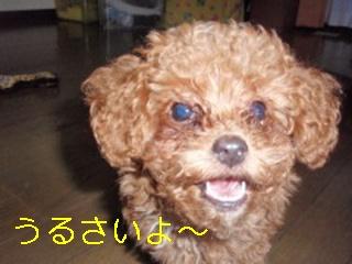 photo_ed1.jpg