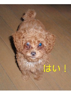 photo_ed2.jpg